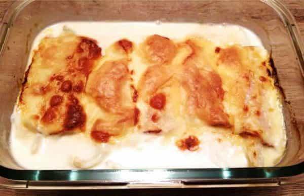 witlof kipfilet en kaas
