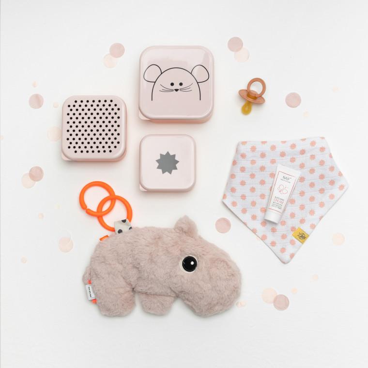 inhoud Babypark Giftbox Silver / Neo
