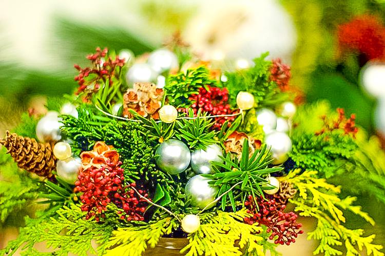 kerstballen in planten