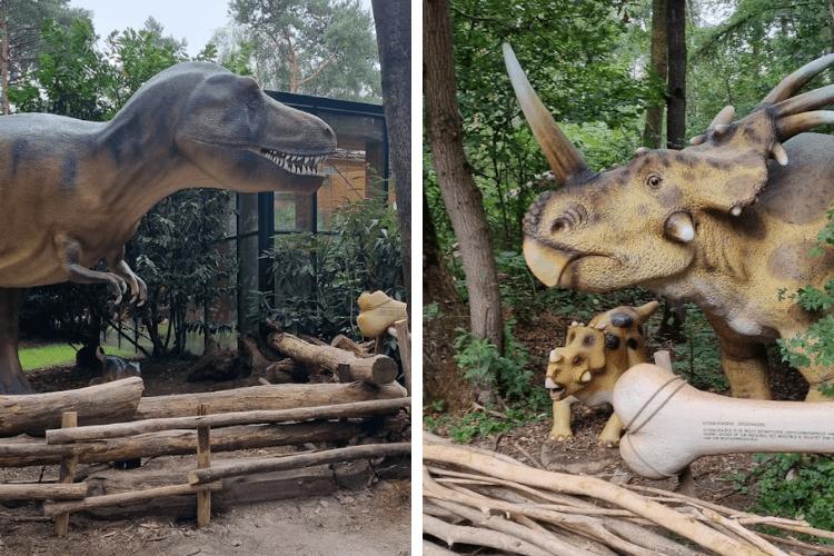 Dierentuin-Amersfoort- Dino park-dino bos